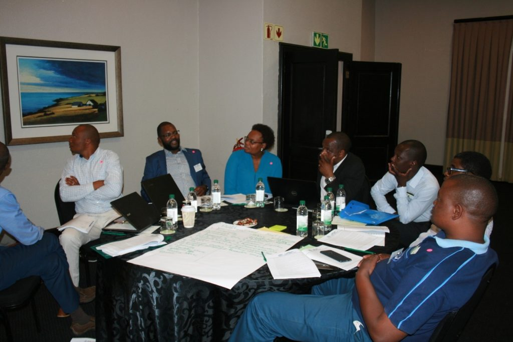 SADC-GMI hosts Validation Workshop as part of the GMI-PLI Project 1