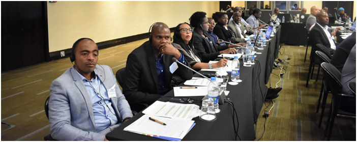 About 70 participants gathered in Johannesburg, South Africa at the workshop where the Framework was shared