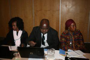Capacity Needs Assessment Workshop003