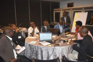 GMI_PLI Project Validation Workshop045