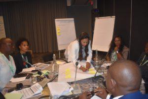 GMI_PLI Project Validation Workshop049
