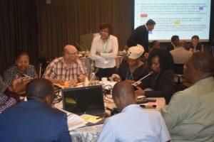 GMI_PLI Project Validation Workshop056