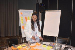 GMI_PLI Project Validation Workshop061