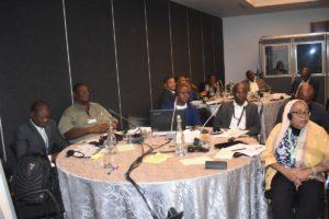 GMI_PLI Project Validation Workshop076