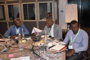 GMI_PLI Project Validation Workshop078